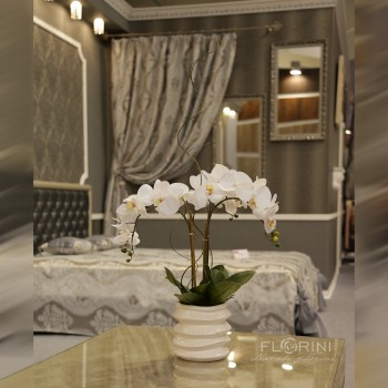 raffaello 350x350 - Искусственные цветы для дома
